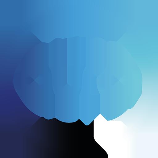 Aura Technology